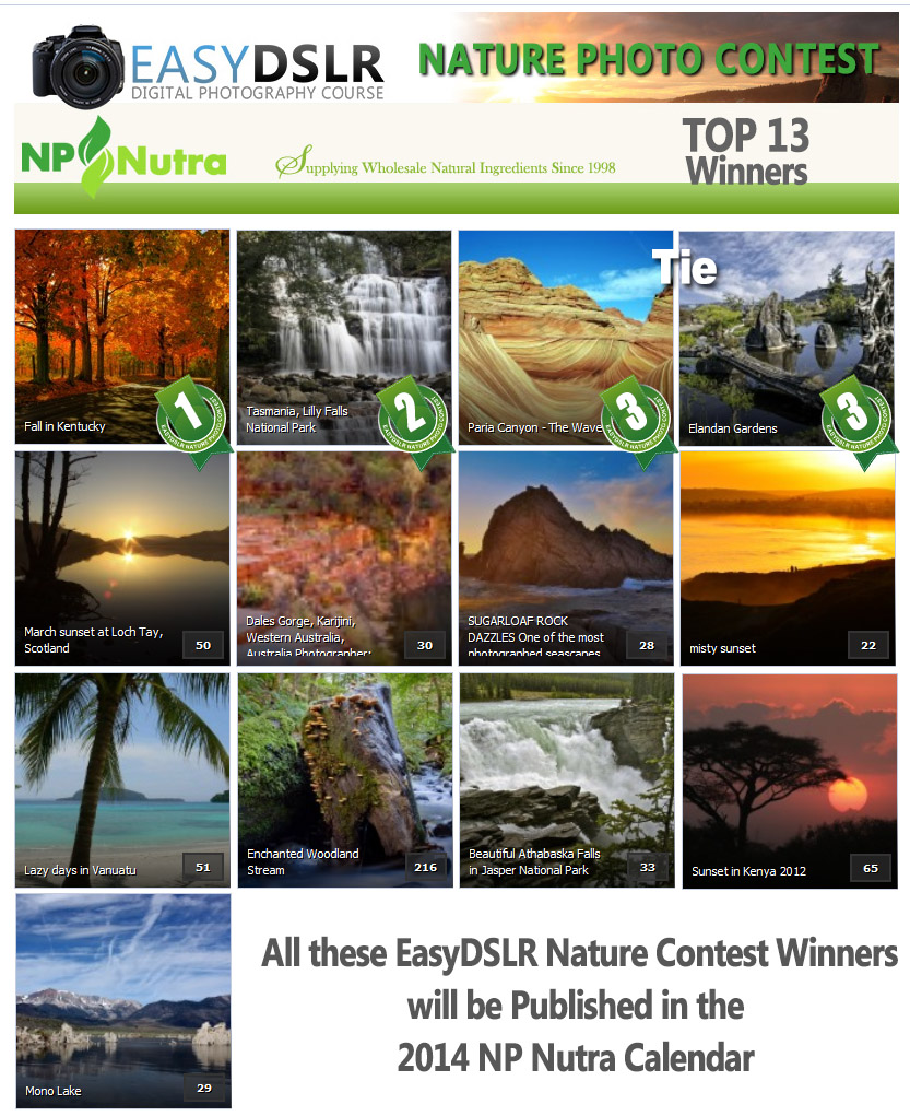 easydslrNaturePhotoContestTop13 Final Results of EasyDSLR Nature Photo Contest
