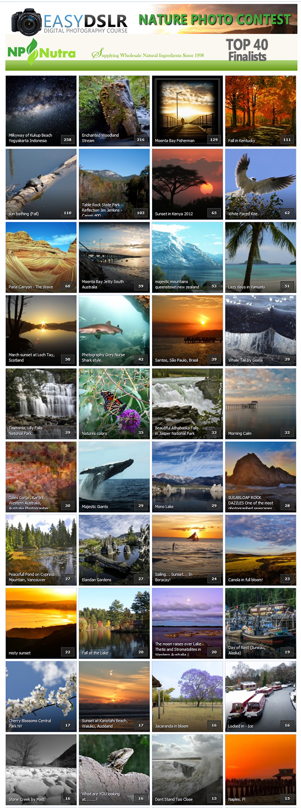 EasyDSLR Members 2013 Photo Contest Top 40