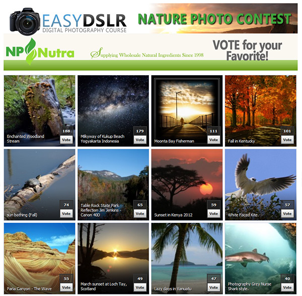 EasyDSLR Nature Photo Contest 2013